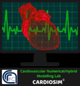 Cardiosim CMBBE workshop