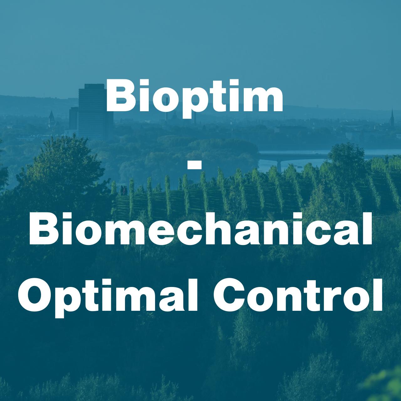 Bioptim CMBBE Workshop