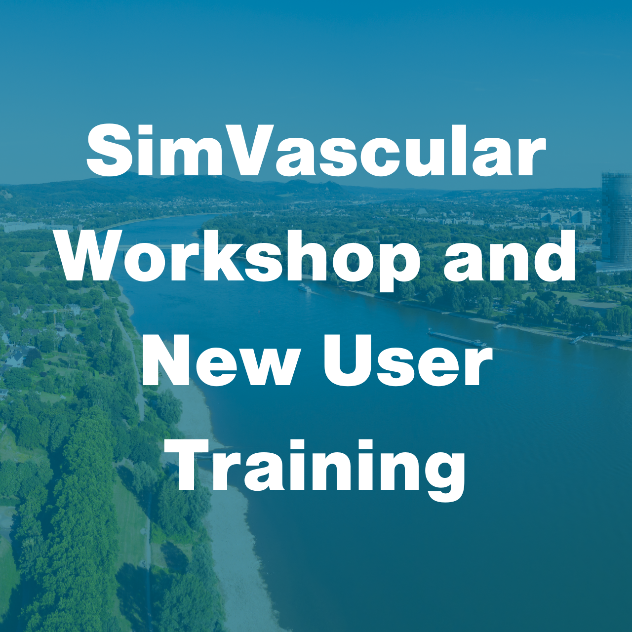 SimVascular CMBBE Workshop